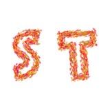 字母S, T由秋叶做成 免版税库存图片