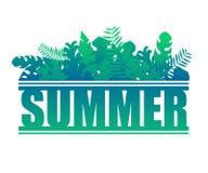 字法夏天异乎寻常的密林热带叶子和植物 向量例证
