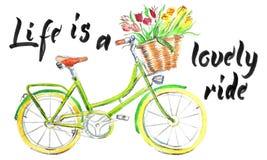 字法,Life_is_lovely_ride 向量例证