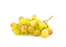 字符串成熟葡萄的麝香葡萄 免版税图库摄影