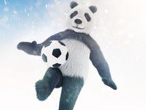 字符在蓝色背景的毛皮报道用bokeh作用和追逐球 熊猫足球运动员举办在sno的训练 库存图片