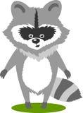 字符逗人喜爱的浣熊传染媒介例证 免版税库存图片