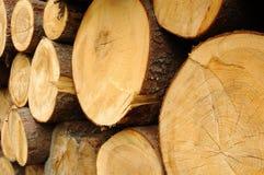 存储木头 免版税库存照片