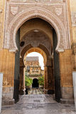 存取大教堂科多巴主要清真寺露台 免版税库存图片