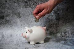 存金钱 在白色背景的存钱罐猪 在白色背景的硬币 投资储款 货币市场 保存现金储款 免版税库存照片