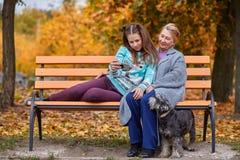 孙女和祖母在秋天公园浏览在电话的Selfie在一条长凳 免版税库存图片