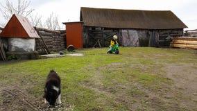 孙子男孩获得乐趣在他的祖母家在村庄,使用与小狗 库存照片
