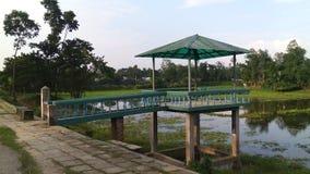 孟加拉国自然 免版税图库摄影