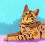 孟加拉猫例证 免版税库存照片