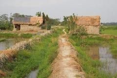 孟加拉的秀丽 免版税库存图片