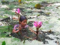 孟加拉的面孔 图库摄影