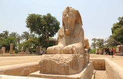 孟菲斯雪花石膏狮身人面象。 免版税库存照片