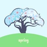 季节和树 免版税库存图片