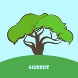 季节和树 库存图片