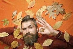 季节和秋天 免版税库存照片