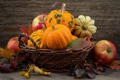 季节性南瓜和苹果在篮子在桌上 免版税图库摄影