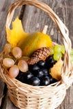 季节性南瓜和葡萄在一个篮子与秋叶 免版税库存照片