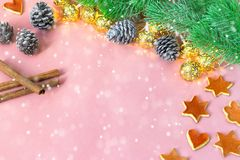 季节性和假日概念 与杉树,桔子,锥体,在浅粉红色的桌上的cinamon的圣诞节装饰 免版税库存照片