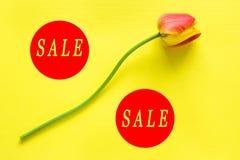 季节性折扣的指定 以在明亮的黄色背景的百分比的形式开花 词销售 库存照片