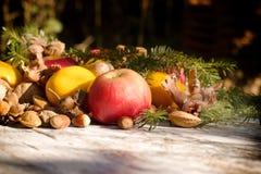 季节性有机果子,健康食物在秋天 免版税库存照片