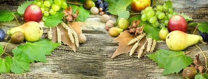 季节性果子,秋天果子-秋天收获 图库摄影