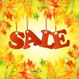 季节性秋天sale.sheets与词销售的纸装饰了秋天折扣的秋天槭树leaves.announcement在白色背景的 免版税库存照片