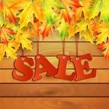 季节性秋天sale.sheets与词销售的纸装饰了秋天折扣的秋天槭树leaves.announcement在白色背景的 库存图片