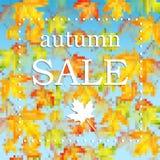 季节性秋天sale.sheets与词销售的纸装饰了秋天折扣的秋天槭树leaves.announcement在白色背景的 图库摄影