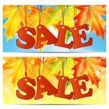 季节性秋天sale.sheets与词销售的纸装饰了秋天折扣的秋天槭树leaves.announcement在白色背景的 免版税库存图片