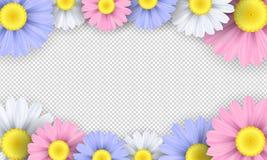 季节性背景 在透明背景的五颜六色的春黄菊花 设计火笔记本模板写您 也corel凹道例证向量 库存图片