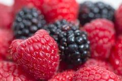季节性莓果 免版税库存照片