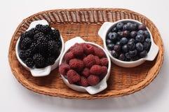 季节的浆果 库存图片