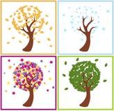 季节结构树 库存照片