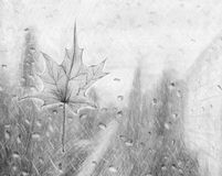 季节草图凹道 库存照片