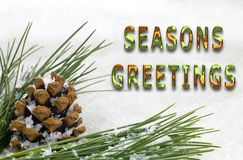 季节问候冷杉球果和分支与雪 免版税库存图片