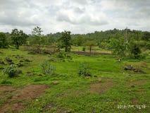 季风在农村印度 免版税库存照片