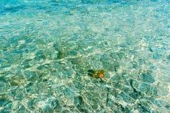 孤独在古芝老挝人Cau海 免版税库存图片