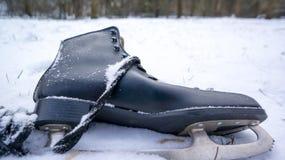 孤独滑冰在雪 库存照片