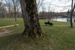 孤独的妇女坐一条长凳在考虑生活的公园看天际-美丽的Liepupes Muiza庄园 库存图片