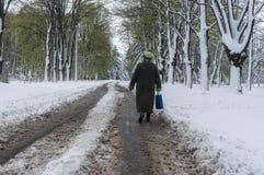 孤独的妇女走的om在强有力的4月雪风暴以后的一条多雪的街道 免版税库存照片