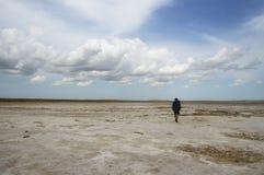 孤独的旅行家 免版税库存照片