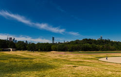 孤独的步行者在riverdale公园 免版税库存照片