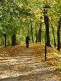 孤独的步行者 库存图片