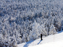 孤独的滑雪者 库存图片