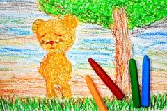 孤独的熊 库存照片