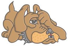 孤独的狗 免版税库存照片