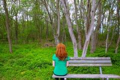 孤独的看对森林的妇女背面图坐长凳 免版税库存照片