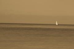 孤立单桅三角帆船桑给巴尔 库存图片