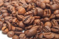 孤立咖啡豆 宏指令 白色backgound 免版税库存照片