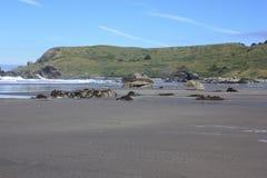 孤立大农场海滩 免版税库存照片